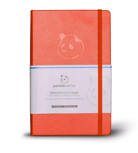 What Is the Best Planner To Buy? Panda Planner Review