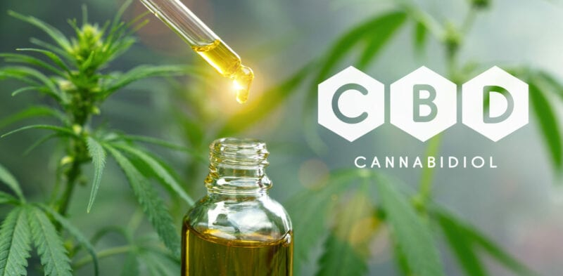 CBD Oil for Brain Health – Your Brain Loves It
